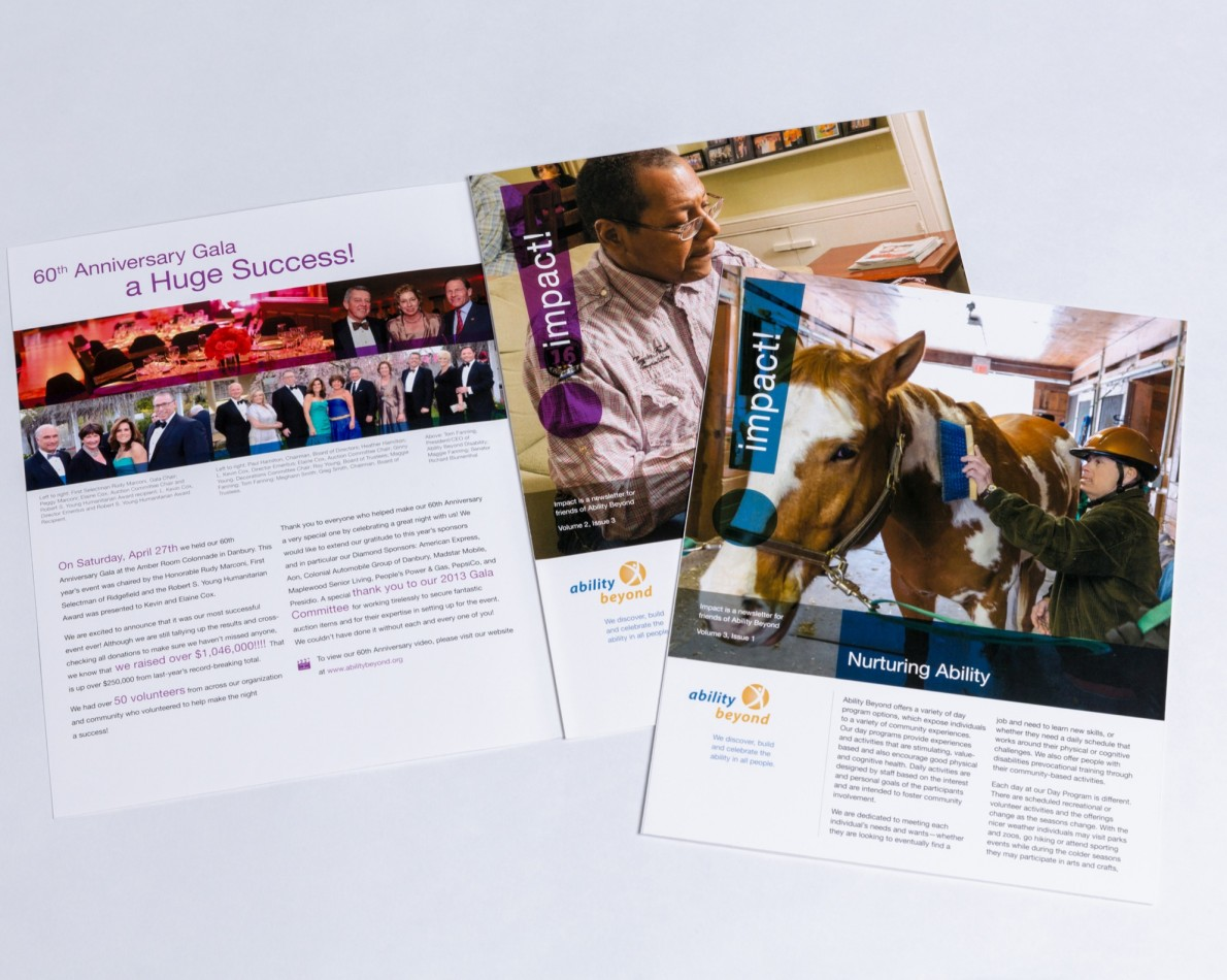 To further celebrate AB's mission and success, we designed and produced inserts for marketing folders to champion their impact on the community and meeting fundraising goals.