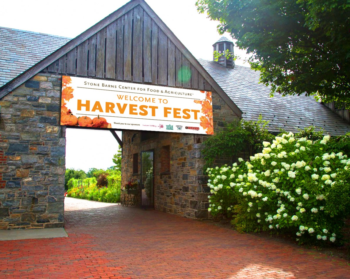 Harvest Fest is a highly visible community event, and we created signage to match. Echoing the colors of leaf-peeping season, this vibrant banner welcomes attendees and sets the tone for a day of fall fun.